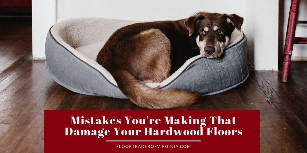 Mistakes You're Making That Damage Your Hardwood Floors