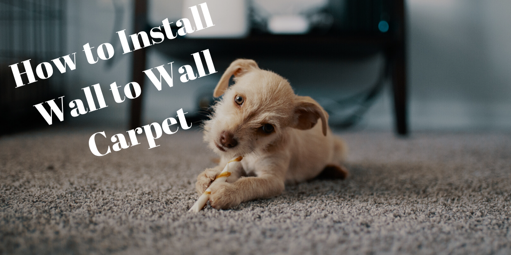 How to Install Wall to Wall Carpet